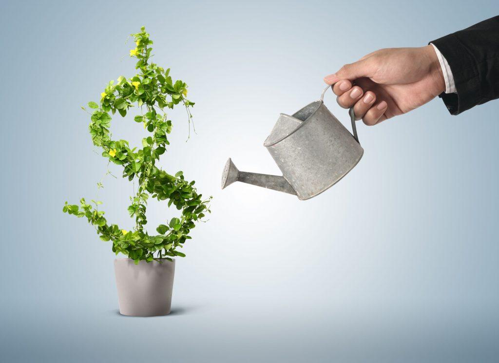 4 простых способа создать вечнозеленый контент для вашего бизнеса